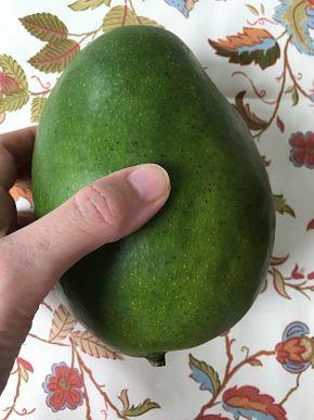 Comprobar si el mango está maduro