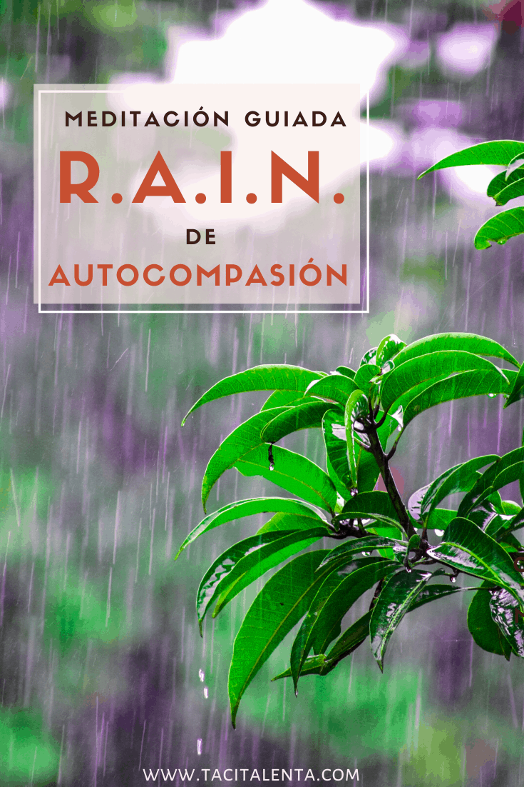 Meditación guiada RAIN