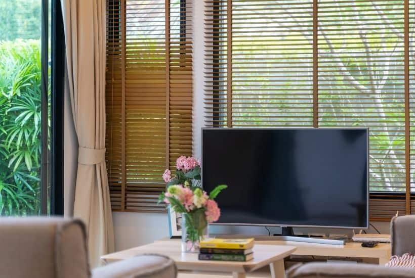 Televisor en salón con fondo relajante de jardín