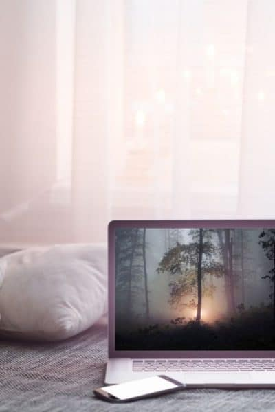 Portátil con imagen de bosque agradable